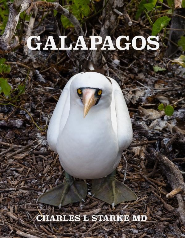 GALAPAGOS  Wonders of a Prehistoric World