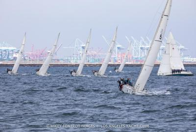 Tight Competition in the Harbor Cup